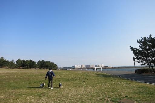 3-1か海散歩