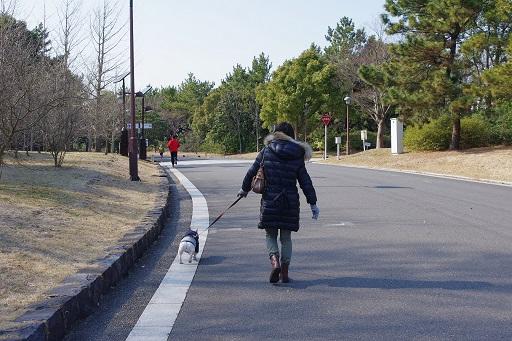3-1かうた散歩