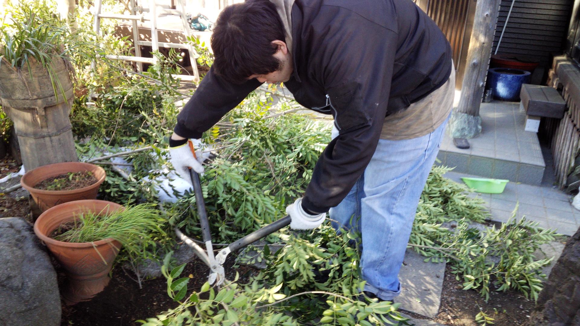 つぐと庭掃除② ^^