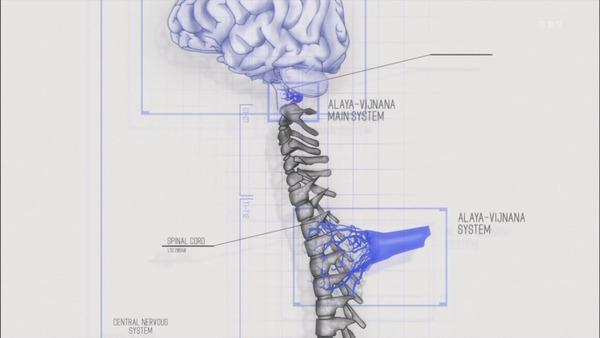 22 阿頼耶識 脳脊髄図
