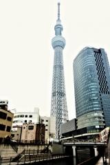 竹末東京プレミアム (1)