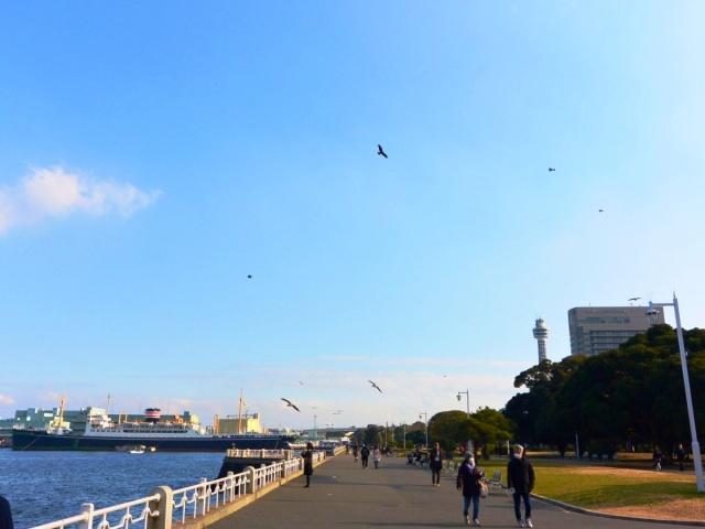 横浜 (13)