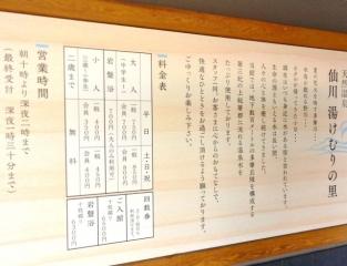 仙川湯けむりの里 (3)