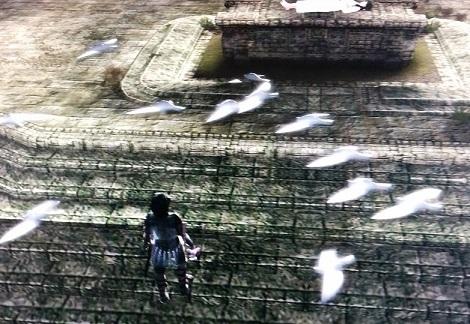 閃光の矢で鳩全滅