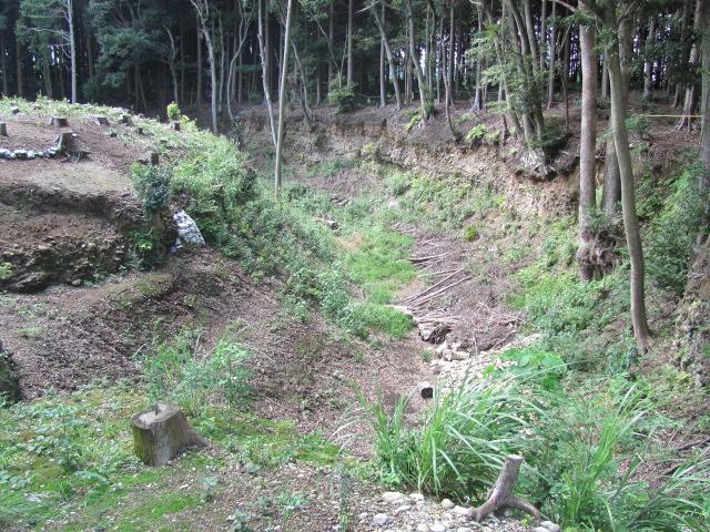 諏訪原城2010.9.10D