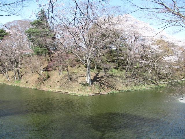 棚倉城2010.4.14D