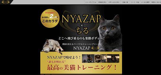 160401_Nyazap.jpg