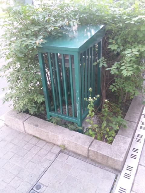 札幌市街植え込みスピーカー 2015.6.18