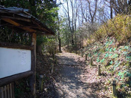山辺の散歩道。