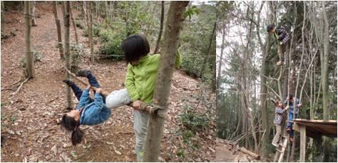 だんごむし・木登り