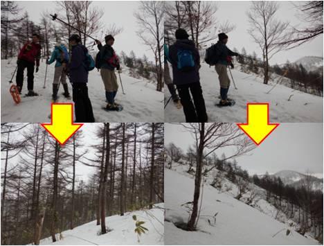 二本木・森林限界