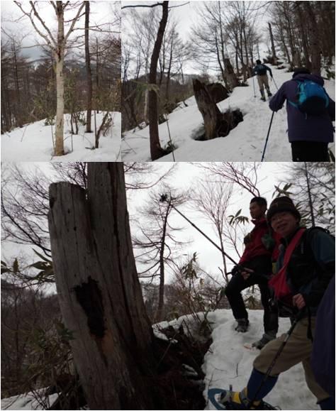 二本木・雪の量