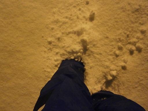 大雪の夜2