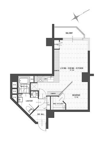 チュリス氷川坂206号室500