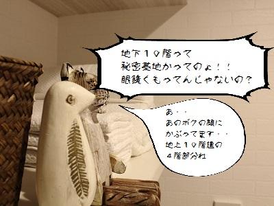 Pnova劇場004
