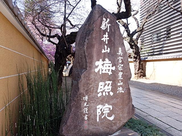 160326araiyakushi02.jpg