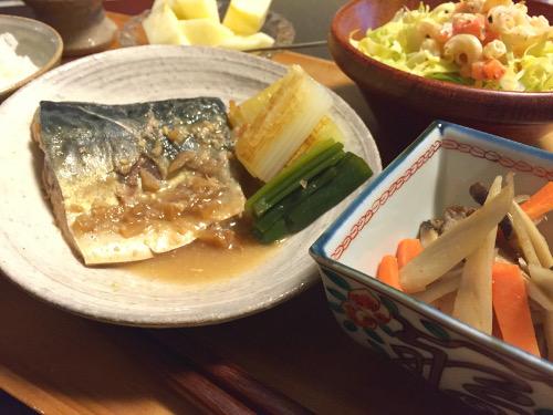 Feb29_鯖の味噌煮