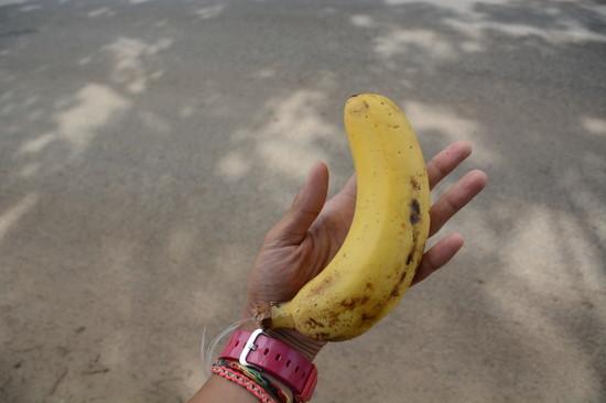ザンビア ルサカ散歩(2)