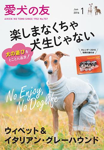 愛犬の友表紙