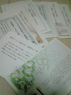 NEC_3317.jpg