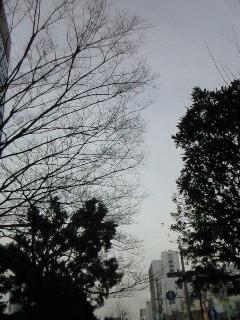 NEC_3348.jpg