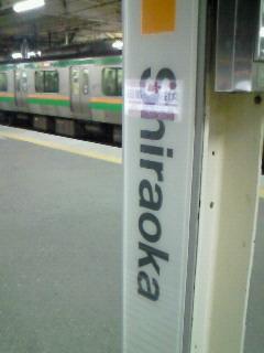 NEC_3431.jpg