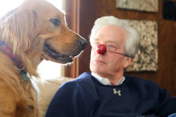 家族にウケなかったネタを犬相手にやってみた