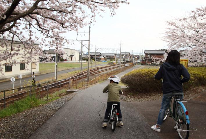 sakusa14.jpg