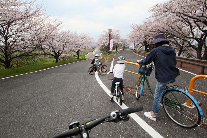 sakusa6.jpg