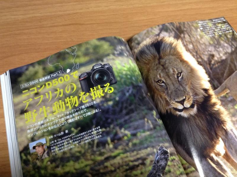 日本カメラD500_2