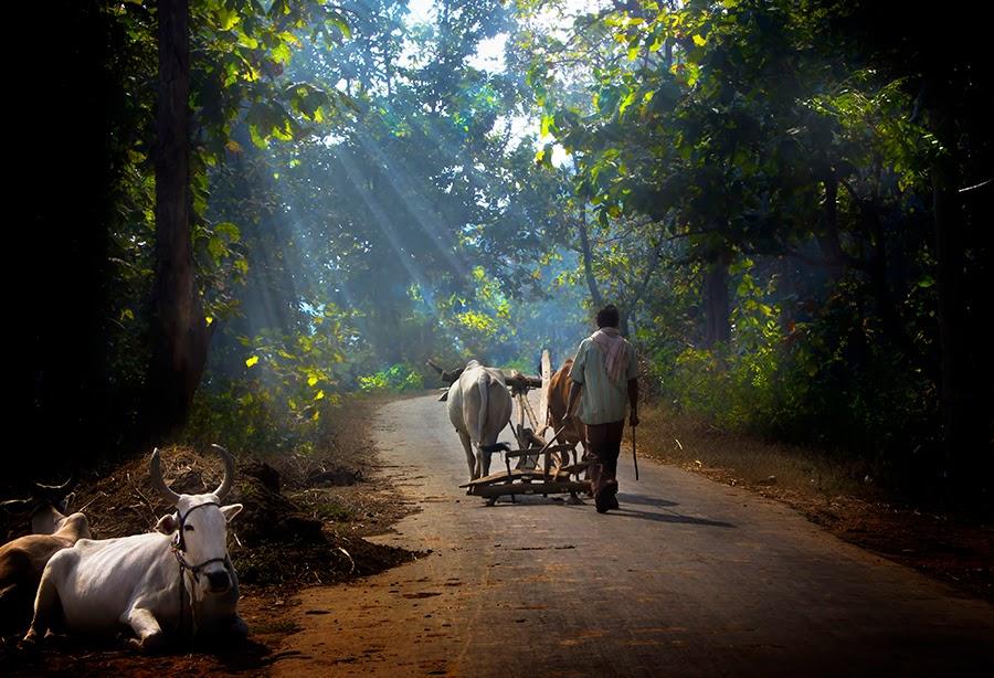 インド田舎