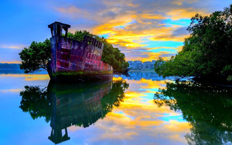 ホームブッシュ湾(オーストラリア)
