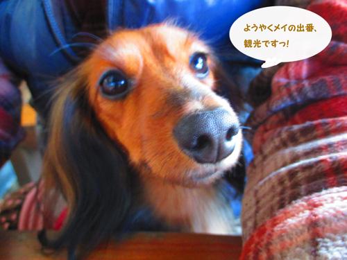 2015-11-titibu13.jpg