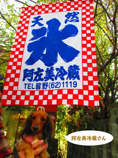 2015-11-titibu37.jpg