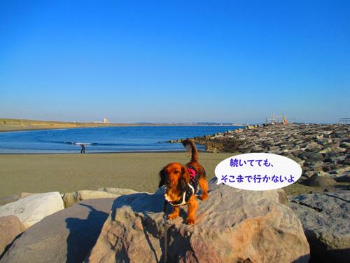 2016-1-beach54.jpg