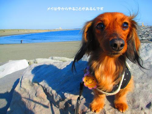 2016-1-beach55.jpg