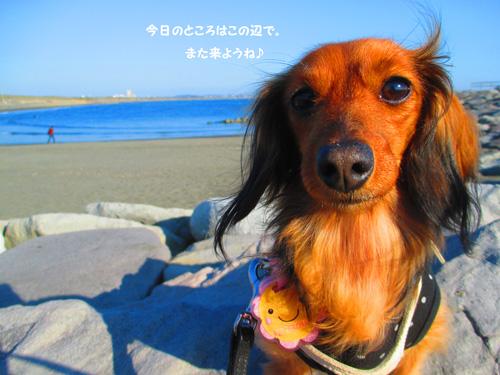 2016-1-beach59.jpg