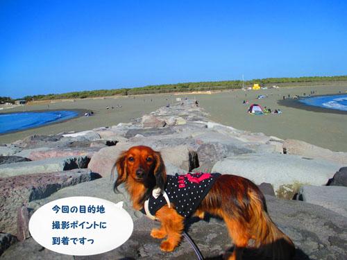 2016-1-beach8.jpg