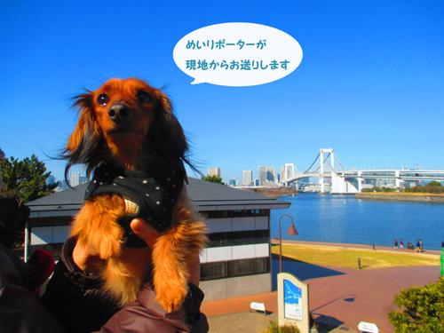 2016-2-daiba10.jpg