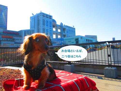2016-2-daiba19.jpg