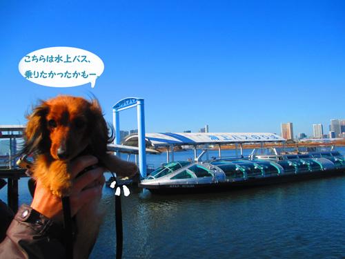 2016-2-daiba38.jpg
