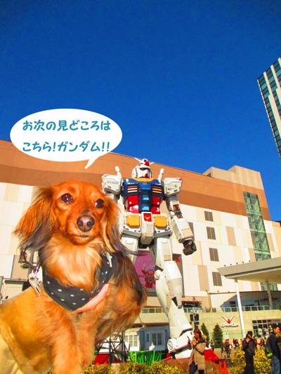 2016-2-daiba55.jpg