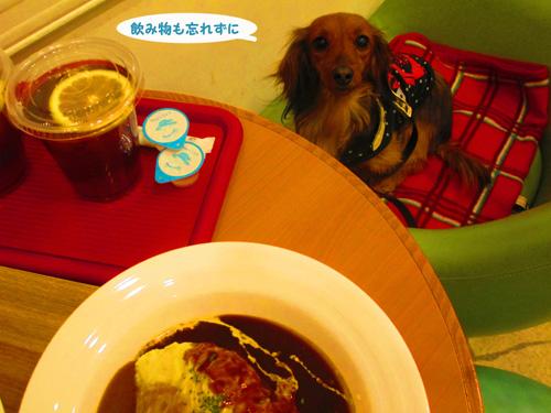 2016-2-daiba64.jpg