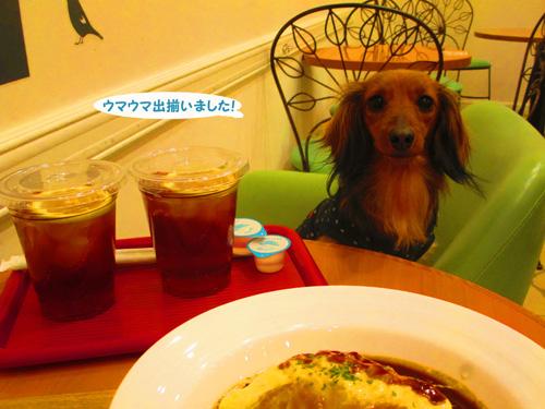 2016-2-daiba68.jpg