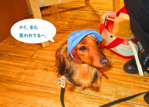2016-2-daiba87.jpg