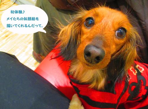 2016-2-daiba90.jpg