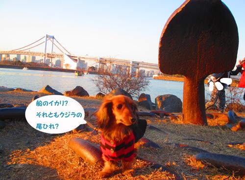 2016-2-daiba96.jpg