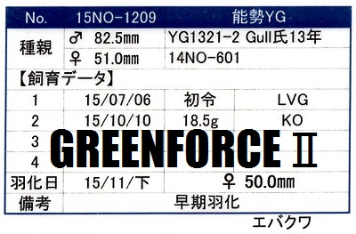 15NO-1209♀500管理カード