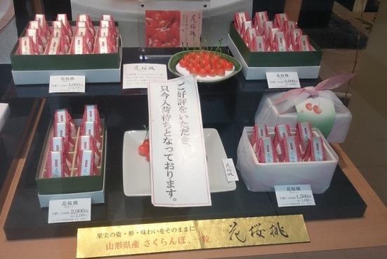 花桜桃01