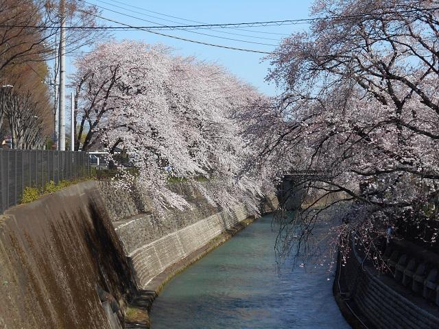 DSCN0427柳原ダム放水路.jpg